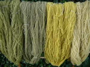 Yarn colors from carrot tops
